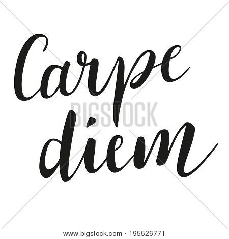 Carpe diem Letter image With Modern Calligraph Brush Script y