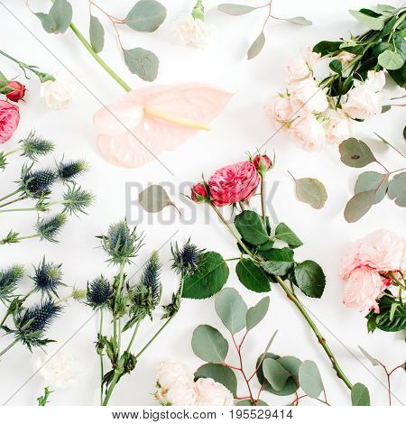 Beautiful flowers: roses eringium anthurium flower eucalyptus on white background. Flat lay top view. Lifestyle composition.