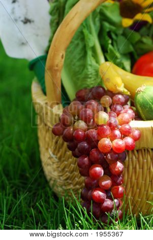 Wicker basket filled with fruits vegetables and flower fresh from the garden poster