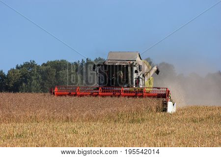 COMBINE-HARVESTER - Agricultural machine on the field at harvest time