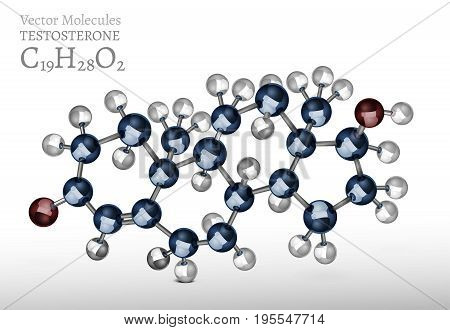 Testosterone molecule structure in 3D style. Beautiful medical vector illustration an metallic blue and silver colours. C19H28O2 image isolated on grey background. Scientific, educational concept.