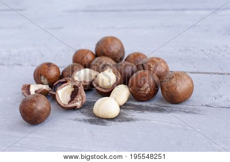 Macadamia is an Australian nut a Kindal. On a wooden fob is a gray-blue color.