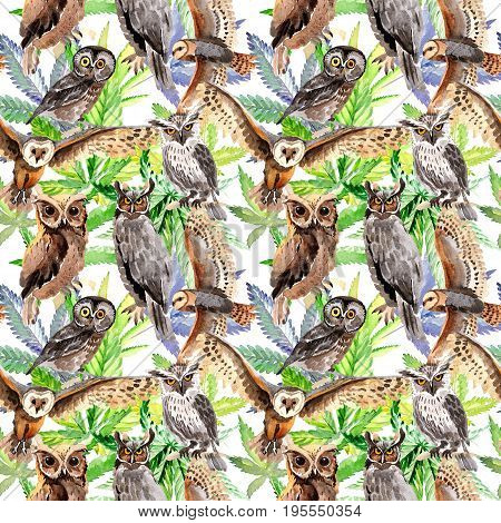 Sky bird owl pattern  in a wildlife by watercolor style. Wild freedom, bird with a flying wings. Aquarelle bird for background, texture, pattern, frame, border or tattoo.