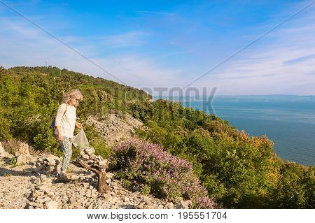 Female hiker collects wild Sage on cliff overlooking the sea. On a trail within the nature reserve of the cliffs of Duino Trieste Italy.