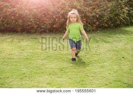 Boy small kid with serious cute face blond long hair in shirt and gray short walking along meadow with green grass and bushes in sunny summer day