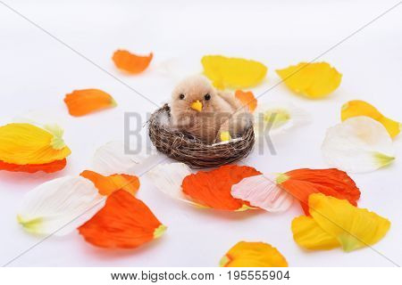 Petals With Small Nest And Bird In It.