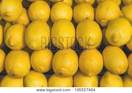 Fresh helathy sour citrus pile lemon on market ready fot selling