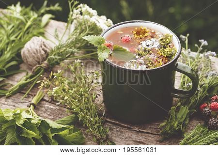 Summer Healthy Herbal Tea In Old Enameled Mug And Bunches Of Healing Herbs On Wooden Board. Herbal M