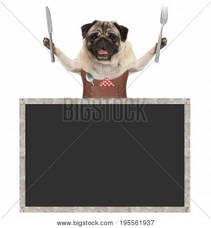 sweet smiling pug puppy dog holding cutlery for eating meal and wearing leather apron with blank blackboard sign isolated on white background