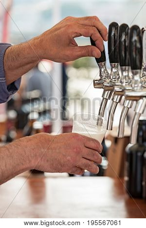 Barman pouring a fresh beer in a glass