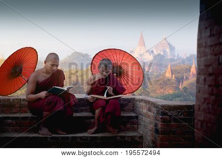 Young buddhist novices reading and study outside monastery Bagan Myanmar