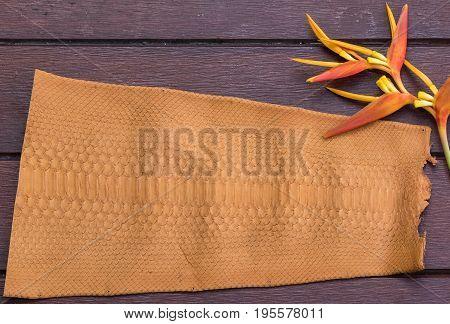 Python snakeskin leather, python skin. Small part