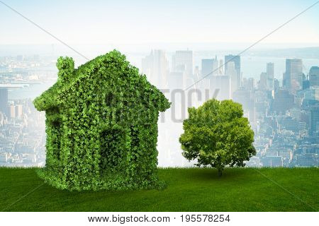 Green house and tree in ecologic living concept - 3d rendering