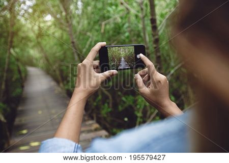 woman use phone taking nature photo rear view
