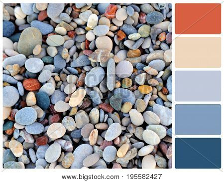 Colorful Pebble Stones Texture By The Beach With Palette Color Swatches