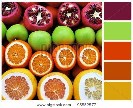 Fruit Mix Row With Palette Color Swatches