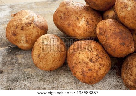 Close up on washed raw yellow potatoes over gritty table