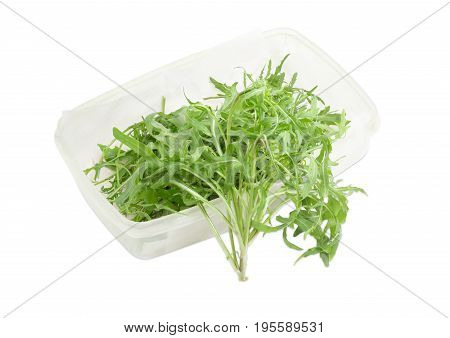 Leaves of the fresh arugula in the plastic container and one arugula stem beside on a light background