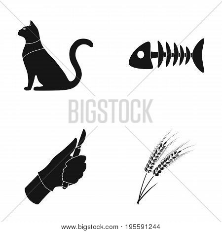 Cat, fish bone and other  icon in black style. surgeon's scalpel, spikelets icons in set collection.