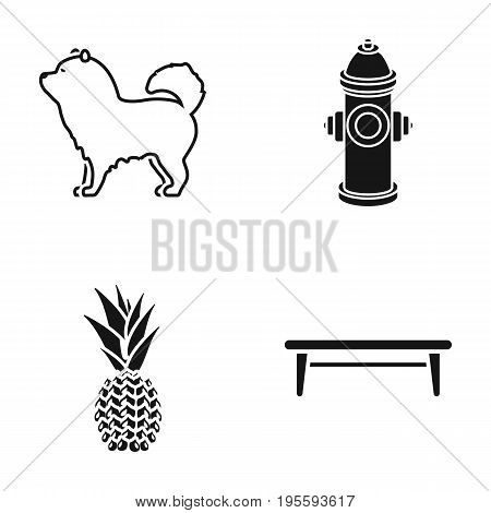 Dog, hydrant and other  icon in black style.pineapple, shop icons in set collection.