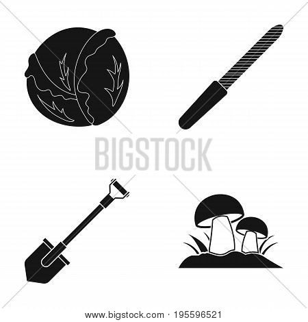 Cabbage, nail file and other  icon in black style. shovel, ceps icons in set collection.
