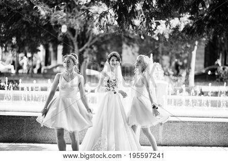 Beautiful Bride With Bridesmaids Posing Next To A Fountain In The Park On A Sunny Wedding Day. Black