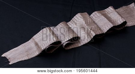 Genuine cobra snakeskin leather, snake skin, texture, reptile on a black background.