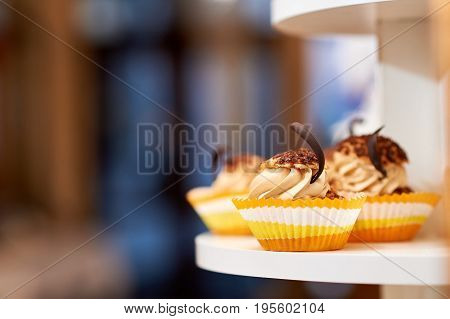 Close up shot of caramel vanilla cupcakes with cream and chocolate decoration copyspace food eating sugar sweet concept.