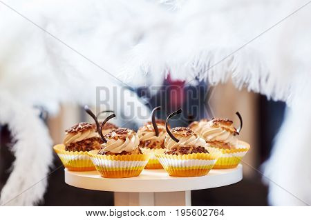 Shot of delicious vanilla caramel cupcakes with chocolate decorations food eating sugar sweetness celebration concept.