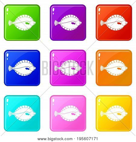 Flounder icons of 9 color set isolated vector illustration