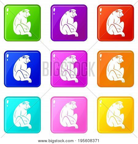 Orangutan icons of 9 color set isolated vector illustration