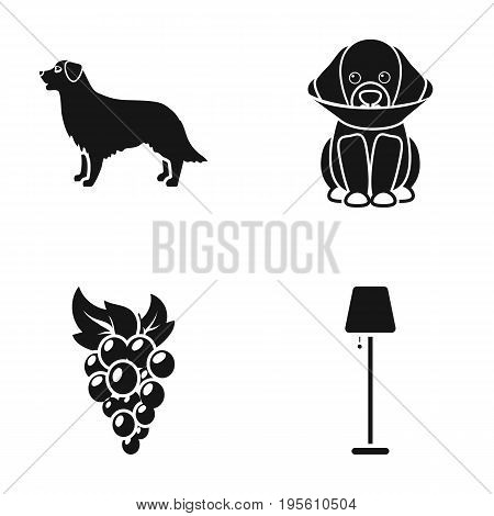 animal, viticulture and or  icon in black style.lighting, veterinary icons in set collection.