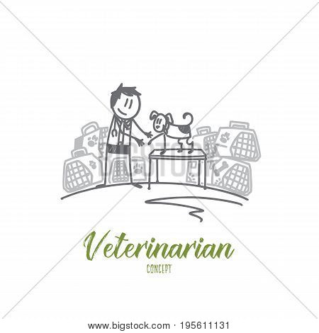 Veterinarian concept. Hand drawn veterinarian in uniform heals a dog in clinic. Animal doctor with a pet isolated vector illustration.