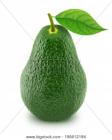Green avocado with leaf isolated on white background