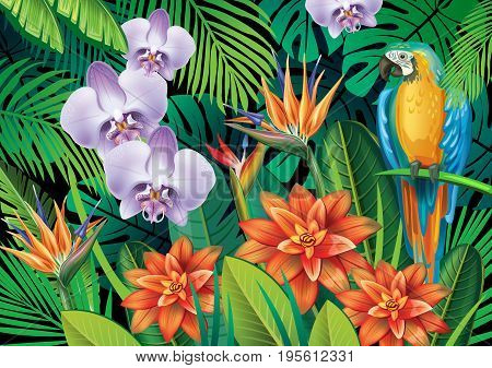 Background with exotic tropical flowers and leaves
