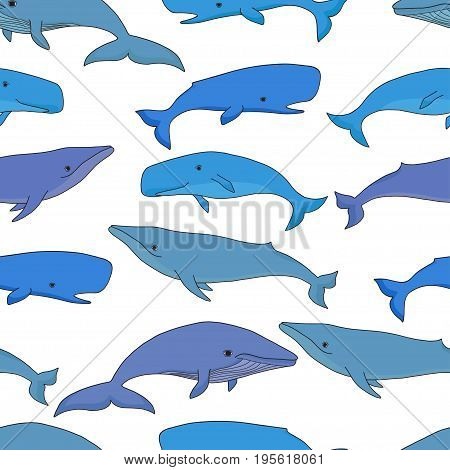 Cartoon vector sea whale and sperm whale seamless pattern. Vector sketch doodle line art.