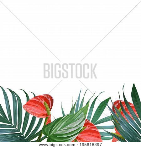 Vector palm leaves and flowers background. Tropical banner. Stylish poster with exotic plants. Hawaiian blooming design. Botanical frame. Card with banana leaf and tropic floral. Flower bouquet.