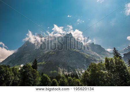 Scenic Swiss Alps Wetterhorner Massif in Summer. Grindelwald Switzerland. Bernese Alps