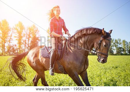 Young happy girl enjoying riding horse on green field at sunny day