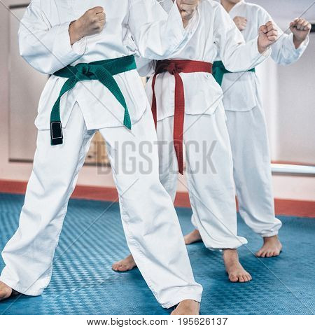 Martial Arts Children On Training Indoors, Toned Image, Color Image