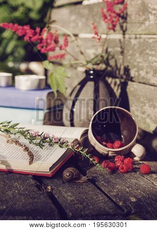 stillife with book snails and raspberries on wooden background