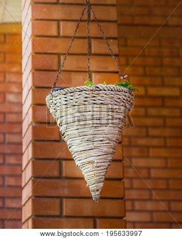 Hanging cache-pot against a red brick wall. Hanging white wicker basket plant on brick background.