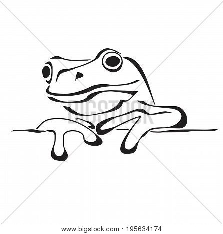Frog in flat style isolated on white. Frog icon for web design