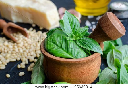Fresh ingredients for pesto genovese sauce on black stone background. Basil leaves in mortar Parmesan cheese pine nuts olive oil garlic and salt. Traditional Italian cuisine.