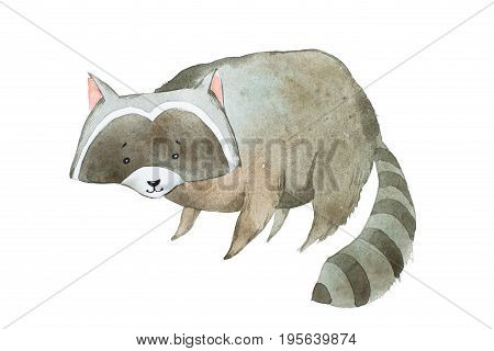 Cute raccoon watercolor technique. Hand drawn cartoon character.