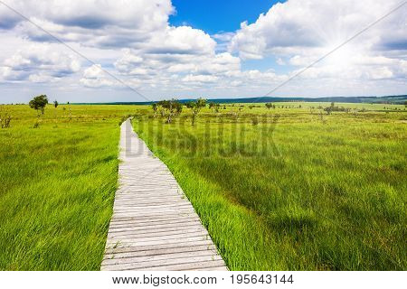 Gorgeous Wide View Over Gangplank At The National Park High Fens Between Eifel And Ardennes