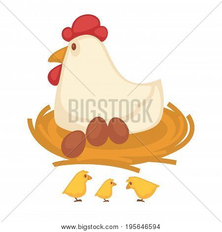 Chicken sitting on eggs and hatching chicks in nest. Farm coop or farmer household of fowl or poultry house. Vector flat isolated icon