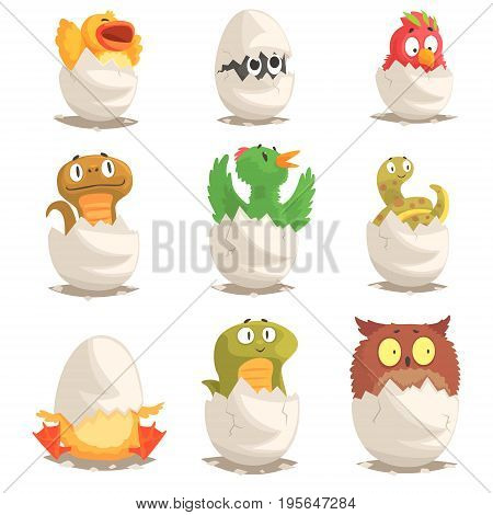 Birds and reptiles hatch from eggs set, unborn animals vector Illustrations isolated on white background