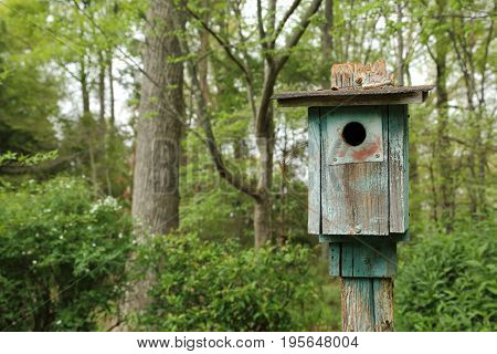 Old Rustic wooden vintage bird house feeder in forest woods