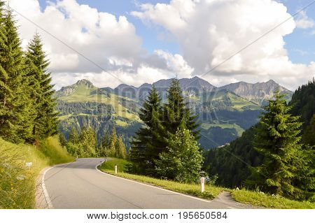 Route in a wooded valley of the tyrol in Austria